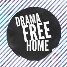 Tips to have a drama free home over the holiday season by Bulldog Solution in Chicago, IL