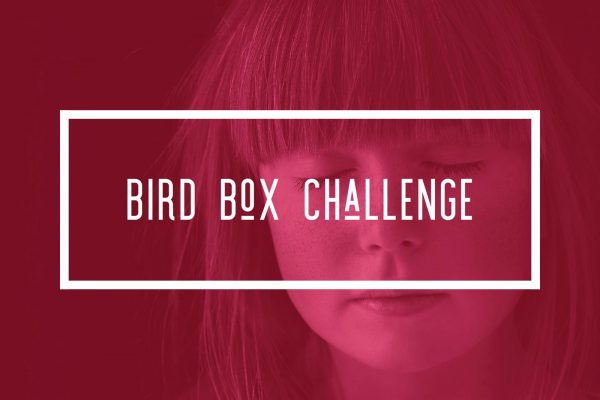 Bulldog Solution talks about the dangers of teens participating in the Bird Box challenge